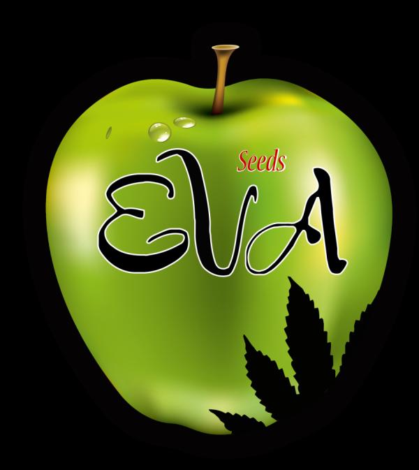 Eva Seeds Vault