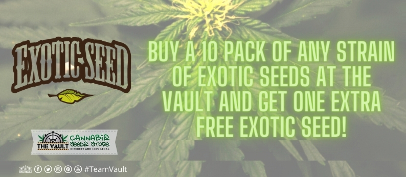 Exotic Seeds Vault Promo - Buy a 10 Pack of Exotic Seeds and Get 1 FREE