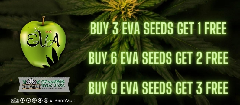Eva Seeds Vault offer