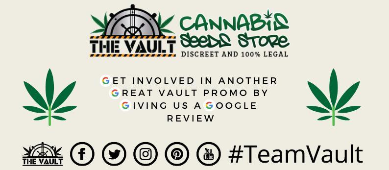 TeamVault Google Reviews