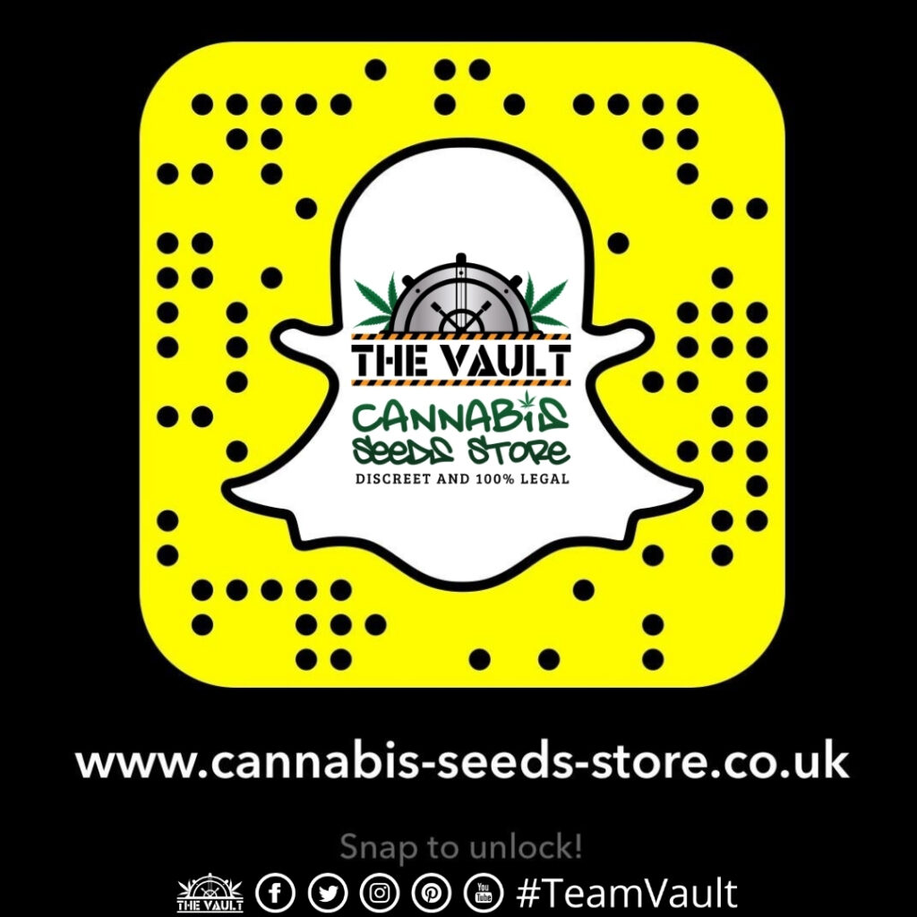 The Vault Snapchat Code 1024x1024 - The Vault Are Now on Snapchat – Are You?