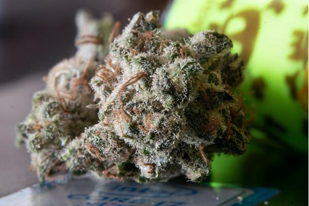 Best Indica Strains for 2020