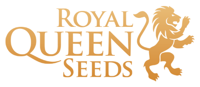 Royal Queen Seeds at The Vault