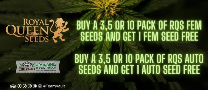 Royal Queen Seeds Vault Promo