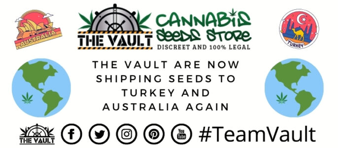 The Vault Are Shipping to Australia and Turkey Again