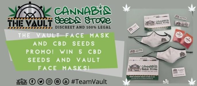 Win CBD Beans from Phoenix Seeds & One Of 8 Vault Face Masks