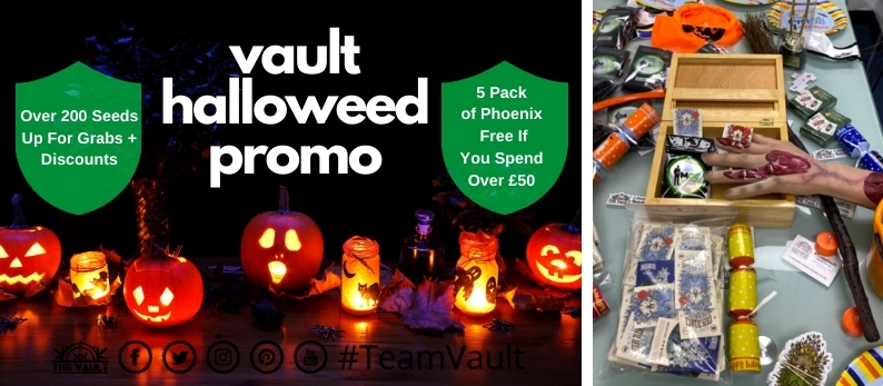 Vault Halloweed