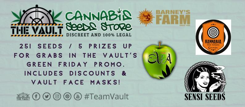 The Vault Cannabis Seed Store3