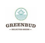 Graines de Greenbud