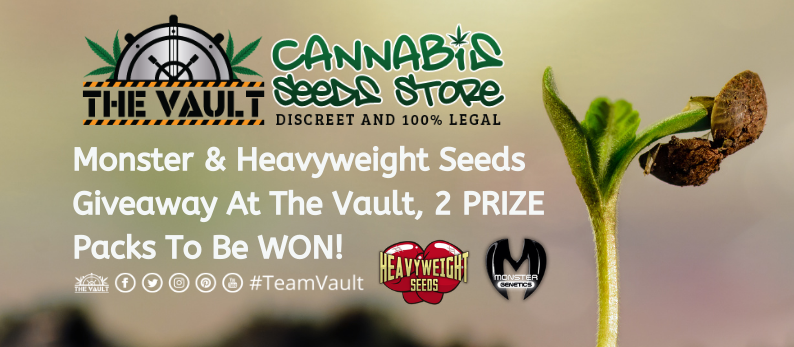 Monster and Heavyweight Seeds Give Away