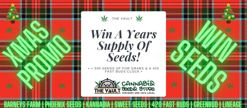 Vault Cannabis Xmas Premier