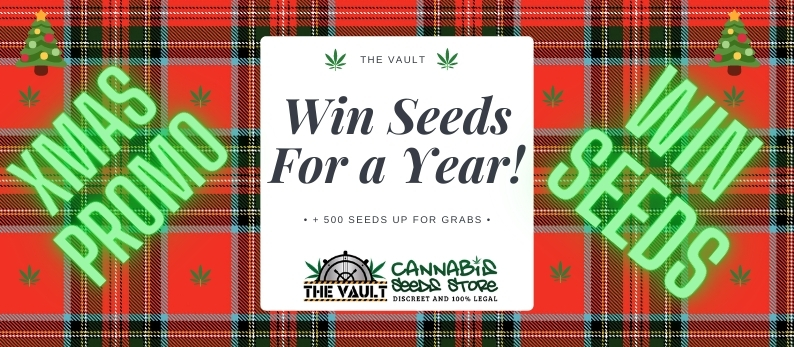 Vault Cannabis Xmas1