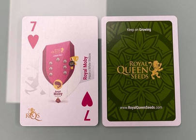 Cartes Royal Queen Seeds