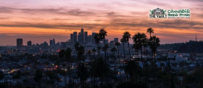 Best Californian Cannabis Strains