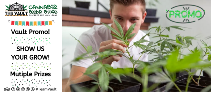Show Us Your Grow Promo – £1000 Worth of Seeds and Merch to Be Won