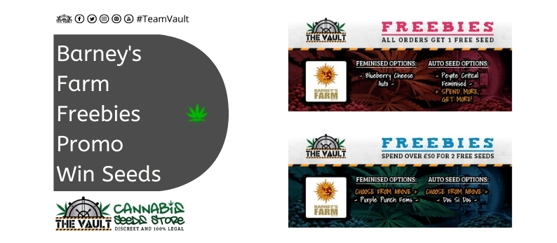 The Vault Cannabis Seed Store Barney's Farm