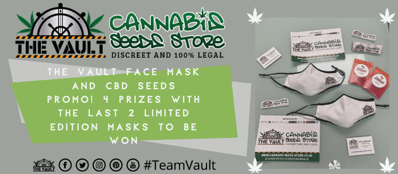 The Vault Cannabis Seed Store CBD