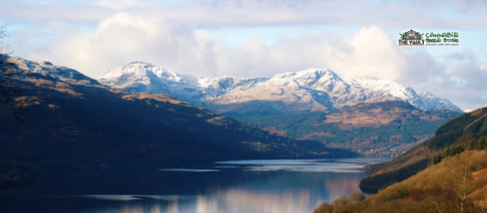 The Best Strains for Hiking in The Highlands