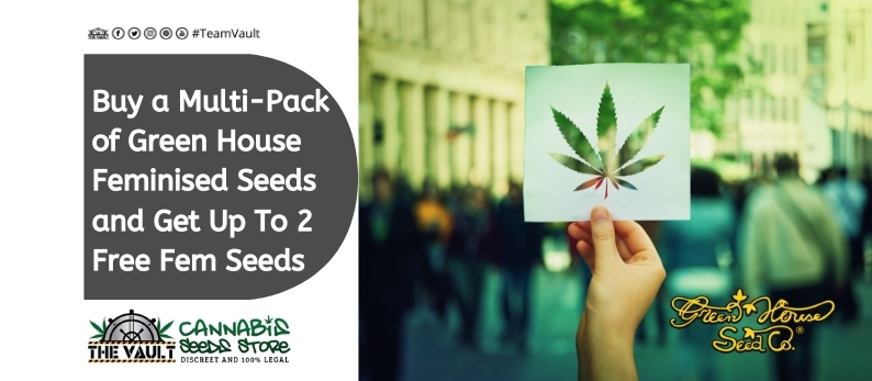 Green-House-Seeds-Promo