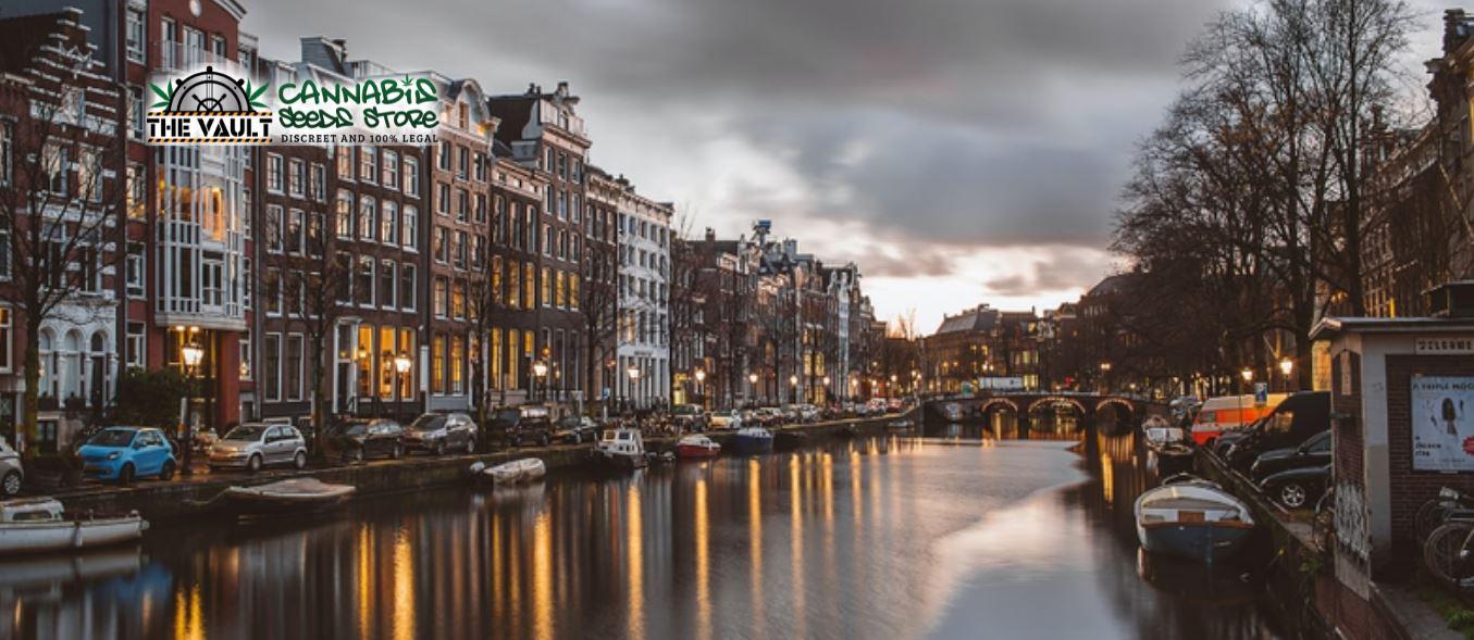 amsterdam-cannabis-capital
