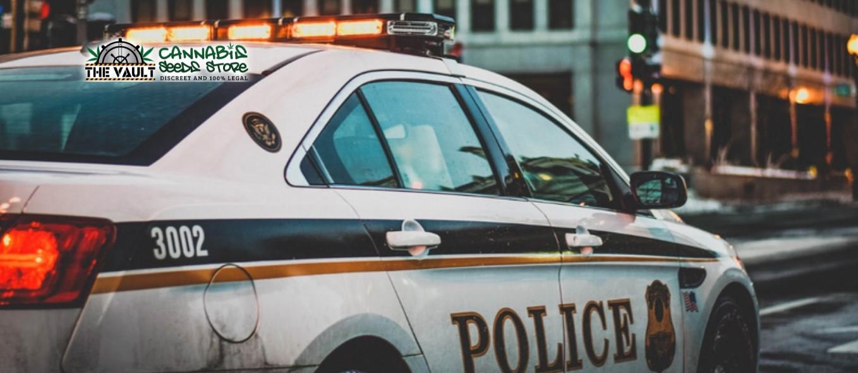 Best Police Weed Blunders