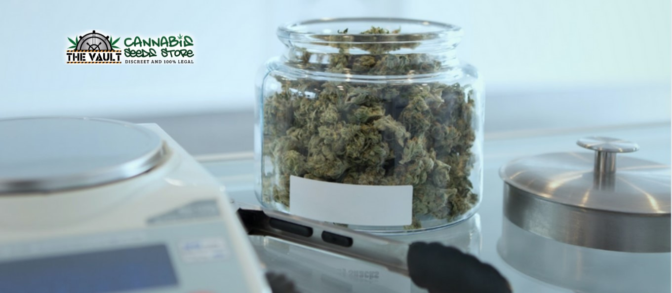 Scotlands First Medicinal Cannabis Dispensary