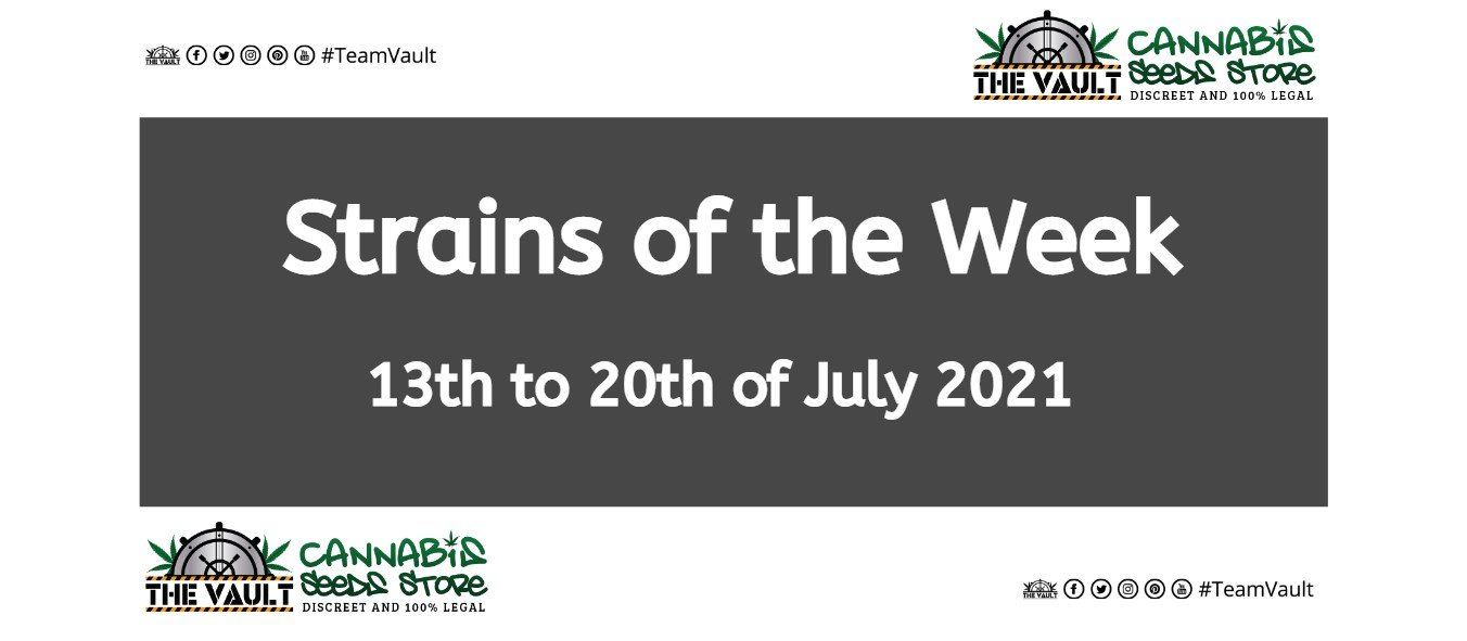 strains of the week 13 to 20 july