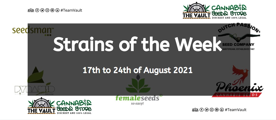 Strains of the Week – 17th to 24th of August 2021