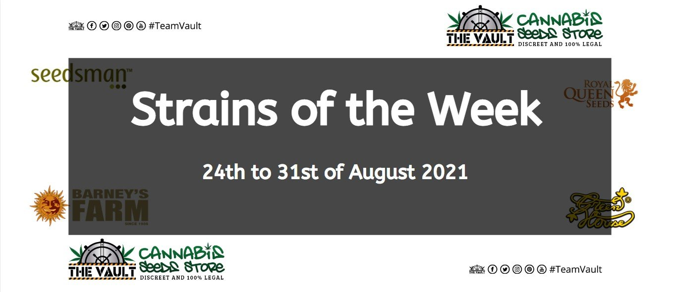 Strains of the Week – 24th to 31st of August 2021 1