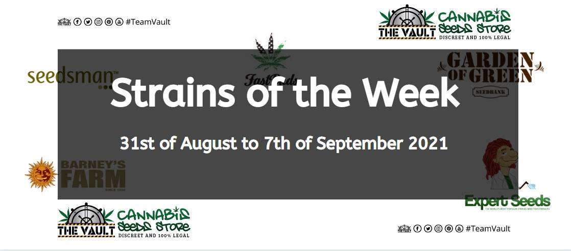 Strains of the Week – 31st of August to 7th of September 2021 1