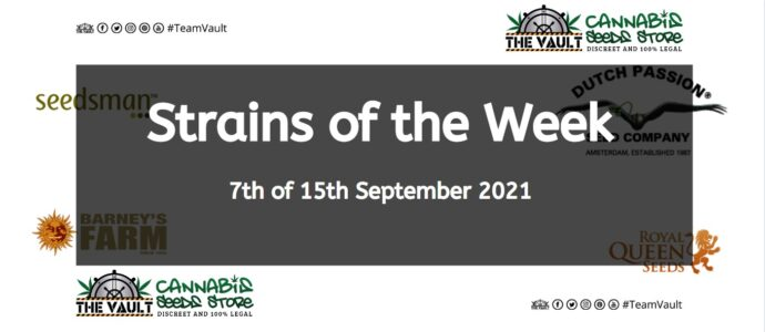 Strains of the Week – 7th to 15th September 2021