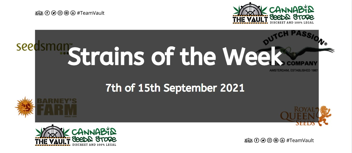 Strains of the Week – 7th of 15th September 2021