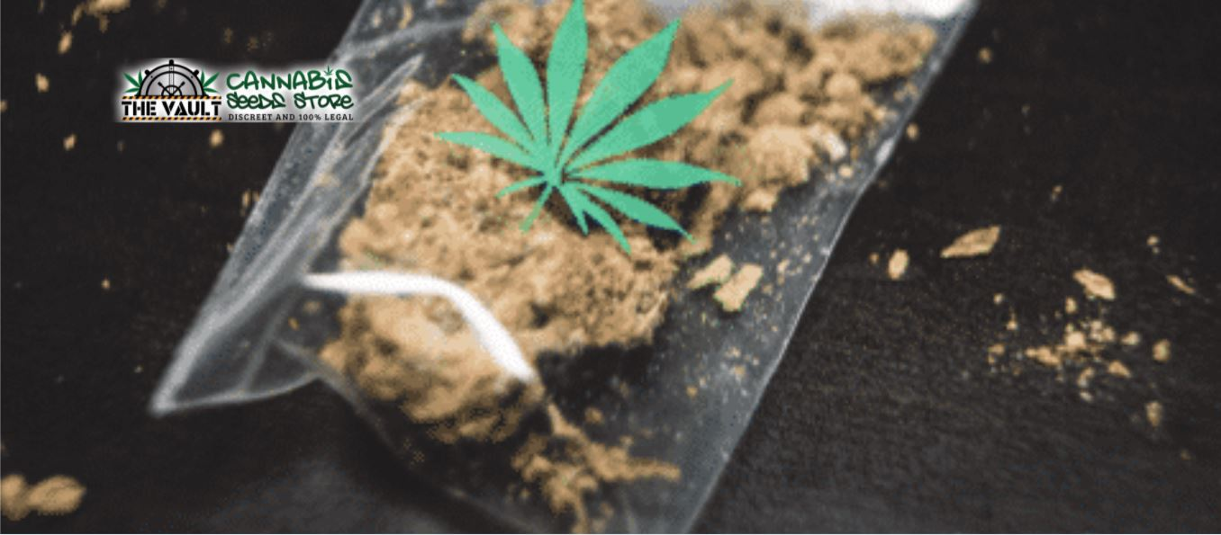 Top Tips for Dispensary Owners