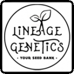 Lineage Genetics Cannabis Seeds
