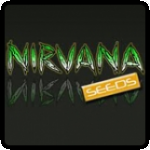 Nirvana Seeds Cannabis Seeds