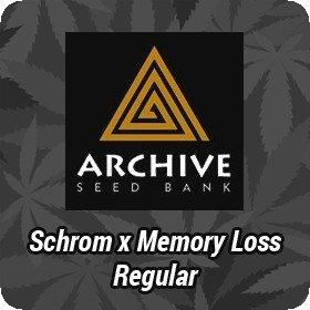 Schrom x Memory Loss Regular Seeds