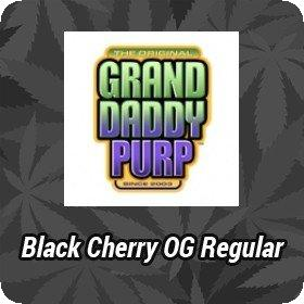 Black Cherry OG Regular Seeds