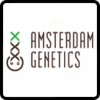 Amsterdam Genetics Cannabis Seeds