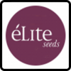 Elite Seeds Cannabis Seeds