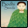 Bodhi Seeds Cannabis Seeds