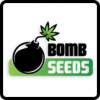 Bomb Seeds Cannabis Seeds